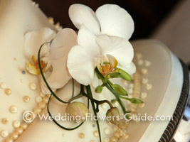 orchids decorating a wedding cake