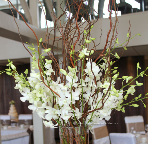 close up photo of white Singapore orchids in a tall wedding centerpiece