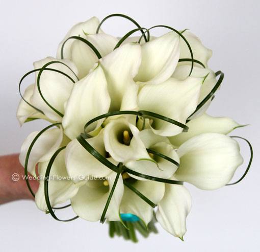 a handtied posy bouquet created with white crystal blush calla lilies